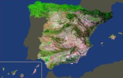 Medios propios en toda España