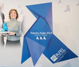 Pajaritas Azules 2018 v1